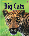 Child Nature Book Internet Linked Big Cats