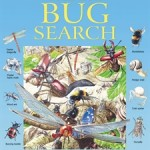 big-bug-search