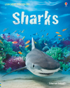sharks-il